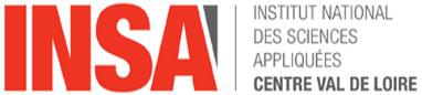 logo4_INSACVL_echelle_1.jpg